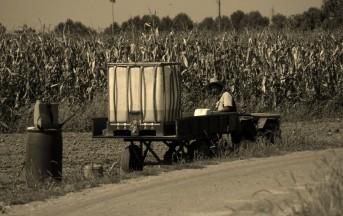 Il Cuore Agricolo di Expo 2015