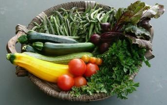Restare Giovani con la Dieta Antiaging