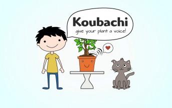 Koubachi: L'Applicazione Android ed Iphone per le piante