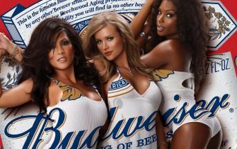 Budweiser, nella birra c'è l'acqua