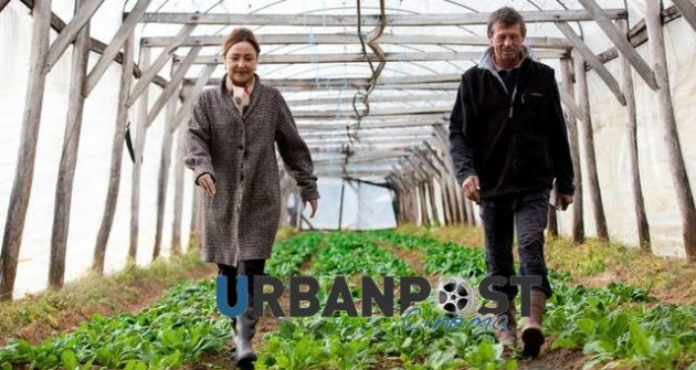 La cuoca del presidente un film sulla cucina francese a marzo nei cinema urbanpost - Quiz sulla cucina ...