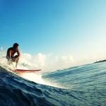 Surf squalo Australia