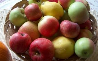 Mele e piacere femminile, quando la frutta migliora le emozioni sotto le coperte