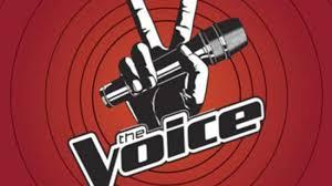 the voice of italy 2 anticipazioni
