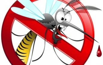 Come proteggersi dalle zanzare e altri insetti estivi