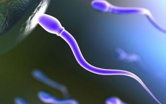 Aumenta l'infertilità maschile: tra le cause anche l'alimentazione