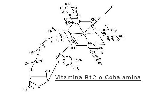 Vitamina-B12 struttura
