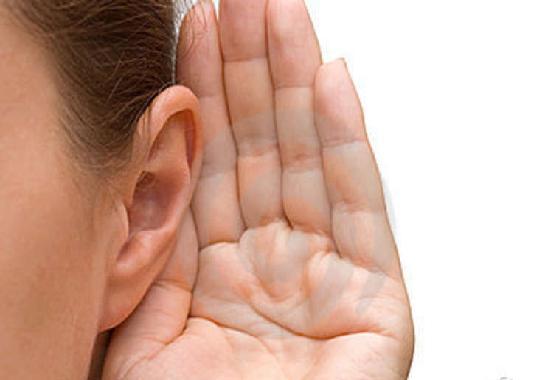 larve carnivore orecchio