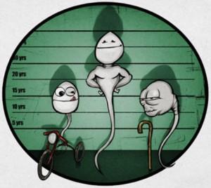 spermatozoi salute