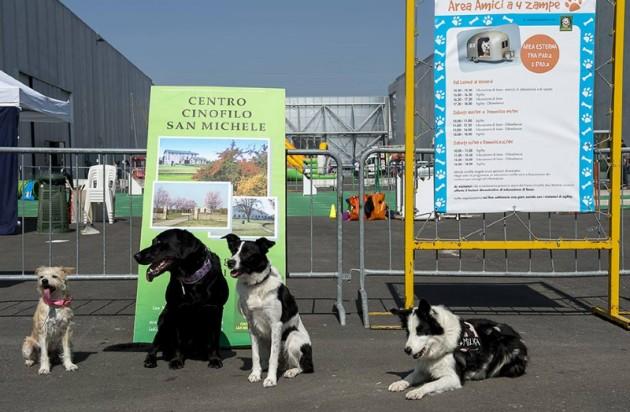 area cani salone del camper