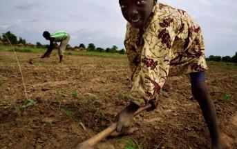 Rapporto Ilo 2013: nel mondo lavorano 170 milioni di bambini