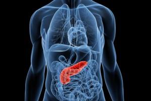 radiografia pancreas