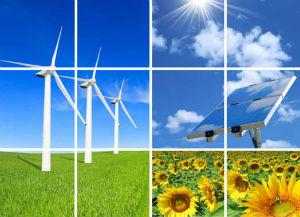 sostenibilità ambiente etica business