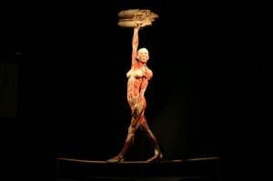 donna mostra Body Worlds