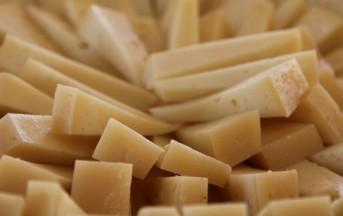 Fiera del formaggio di fossa, a Forlì-Cesena il 17 e 24 novembre e 1° dicembre 2013