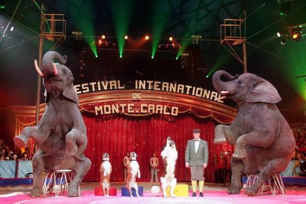 Festival Circo Montecarlo