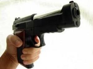 pistola strage Collegno