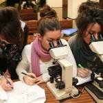 ricerca bando dottorato Università Verona