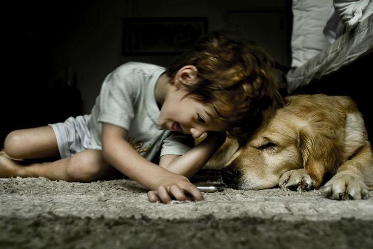cani e bambini video