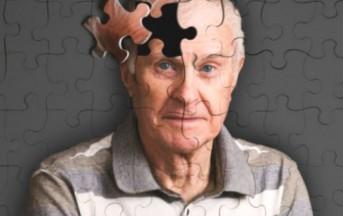 Alzheimer e cibo 'spazzatura': c'è un legame