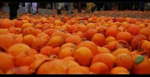 arance Ivrea Carnevale