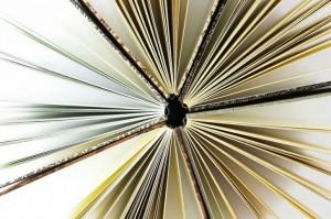 libri mostra Salaborsa Bologna