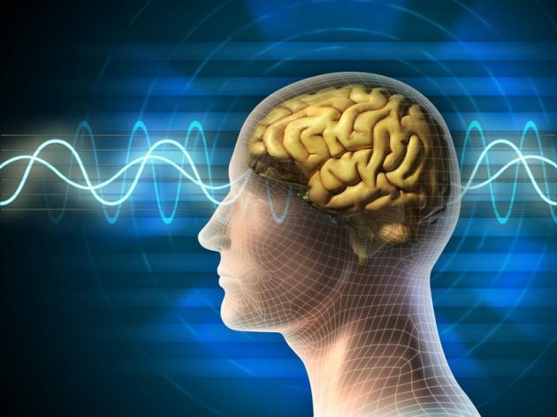 cervello percezione menzogne