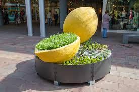 limone milano