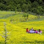 premio turismo sostenibile 2014