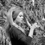 Brigitte Bardot acconciatura