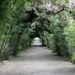 Giardini Boboli Firenze