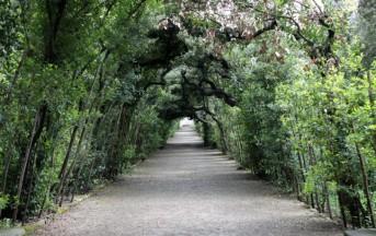 """Un itinerario """"green"""" a Firenze: da San Miniato al Monte ai Giardini di Boboli"""