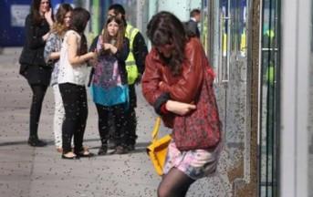 Londra, Victoria Street invasa da sciame d'api: aggredita una donna