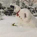 pupazzo di neve alcol