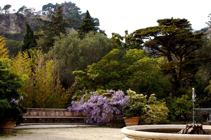 Giardini Inglesi Ad Alassio Riaperti I Giardini Di Villa