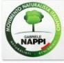 partito naturalista