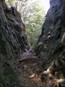 sentiero tra rocce val grande