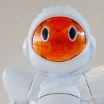 Birò robot