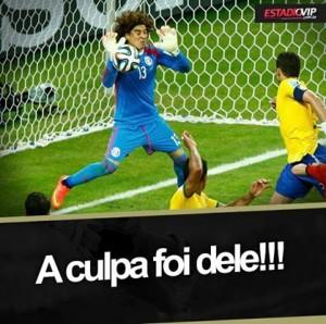 Seleçao Brasileira é paixao facebook1