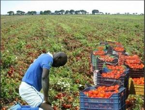 balotelli foto razzista pomodori
