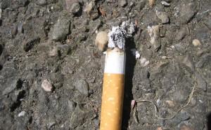 vaso pieno di sigarette diventano green Napoli