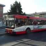 Autobus Atac quartiere Acilia