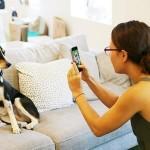 BarkCam social fotografico per cani