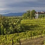 Friuli Venezia Giulia chiusura convogli 2014