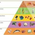 come funziona la dieta Atkins