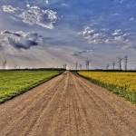 manifesto sostenibilità ambientale 2014