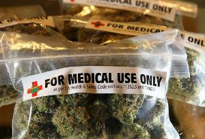 Puglia: cannabis terapeutica approvata