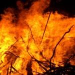 piromane arrestato mentre appiccava fuoco parco nazionale del Gargano