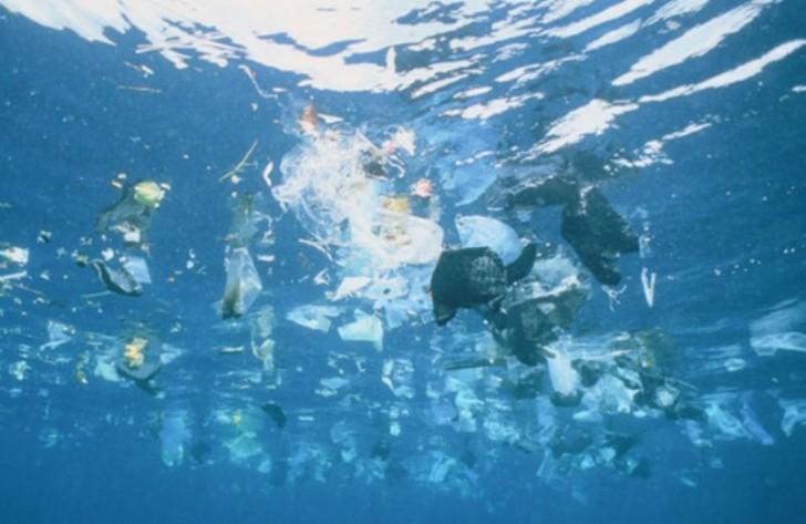 очистка морского дна от пластика