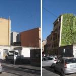 orti urbani Roma 2014